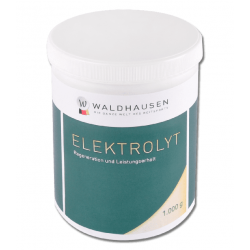 ELECTROLYTE 1 KG - REGENERATION AND SUSTAINED PERFORMANCE