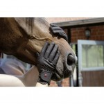 Riding gloves -Professional Thinsulate Winter-