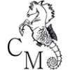 CM- Cavallino Marino