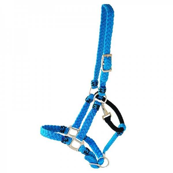 "Halter ""Kentucky"""